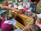 Fotogalerie U včelaře, foto č. 3