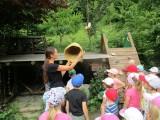 Fotogalerie U včelaře, foto č. 4