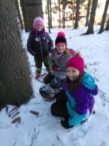 Fotogalerie Vycházka do lesa 2. třída, foto č. 14