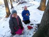 Fotogalerie Vycházka do lesa 2. třída, foto č. 11