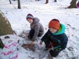 Fotogalerie Vycházka do lesa 2. třída, foto č. 12