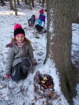 Fotogalerie Vycházka do lesa 2. třída, foto č. 10