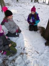Fotogalerie Vycházka do lesa 2. třída, foto č. 8