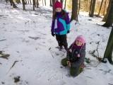 Fotogalerie Vycházka do lesa 2. třída, foto č. 4